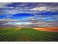 poljoprivredno-zemljiste-na-prodaju-small-0