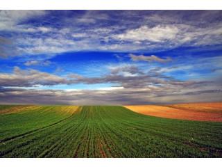 Poljoprivredno zemljiste na prodaju