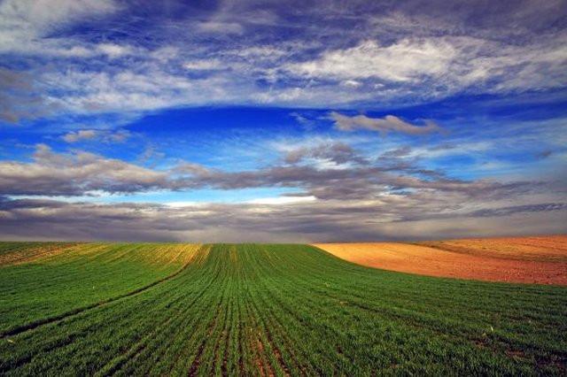 poljoprivredno-zemljiste-na-prodaju-big-0