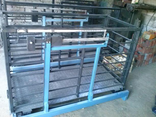 stocna-vaga-500-kg-sa-ogradom-15m-x-075m-big-2