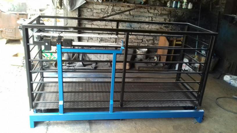stocna-vaga-750-kg-sa-ogradom-big-0