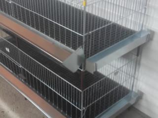 Kavezi za pilice i zeceve – proizvodnja I prodaja