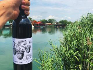 Kupinovo vino sa medom sa obronaka Kopaonika