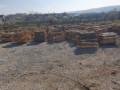 drva-okrajci-okorci-small-0