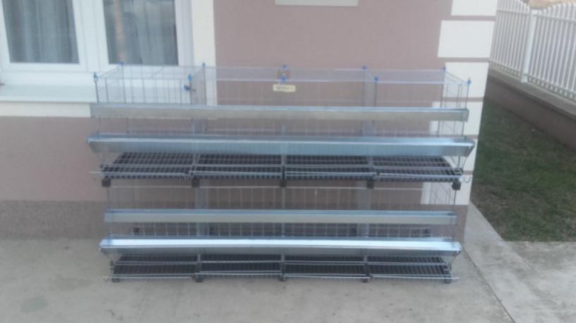 kavezi-za-koke-nosilje-proizvodnja-i-prodaja-kaveza-big-2