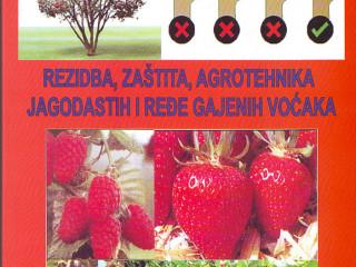 Rezidba, zaštita i agrotehnika jagodastih i ređe gajenih voćaka