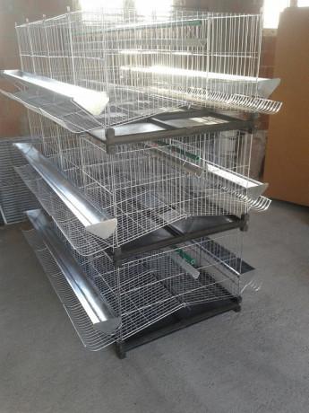 kavezi-za-koke-nosilje-proizvodnja-i-prodaja-kaveza-big-1
