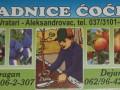 prodaja-vocnih-sadnica-rasadnik-cocic-small-0