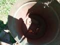 mehanicka-sejalica-za-kukuruz-i-suncokret-small-4
