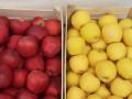 jabuke-crveni-i-zlatni-delises-small-2