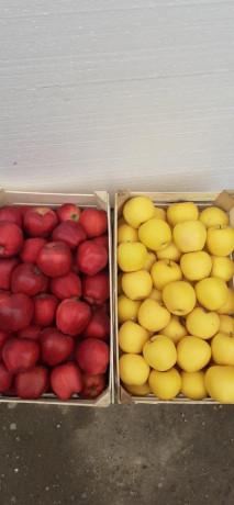 jabuke-crveni-i-zlatni-delises-big-0