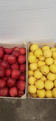 jabuke-crveni-i-zlatni-delises-big-2