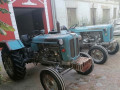 kupujem-rakovica-60-65-76-isplata-odma-0628967729-small-0
