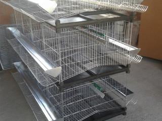 Kavezi za koke nosilje - Novi Sad