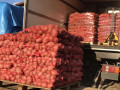 prodajem-krompir-small-0