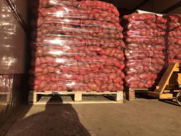 prodajem-krompir-big-1