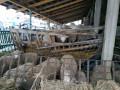 kvalitetni-jaganjci-30-60kg-small-2