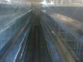 kavezi-za-koke-nosilje-proizvodnja-i-prodaja-kaveza-small-0