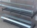 kavezi-za-koke-nosilje-proizvodnja-i-prodaja-kaveza-small-4
