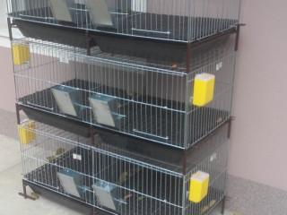Kavezi za pilice i zeceve