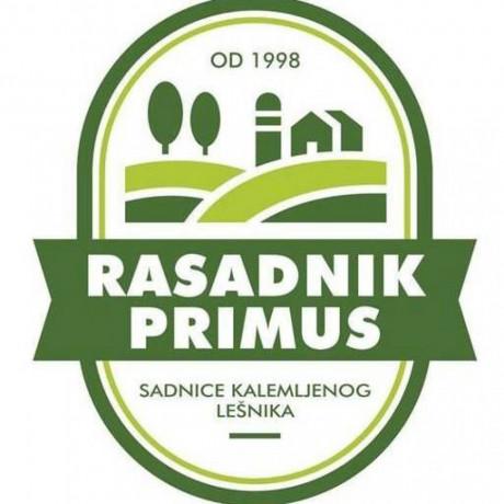 kalemljeni-lesnik-rasadnik-primus-big-4