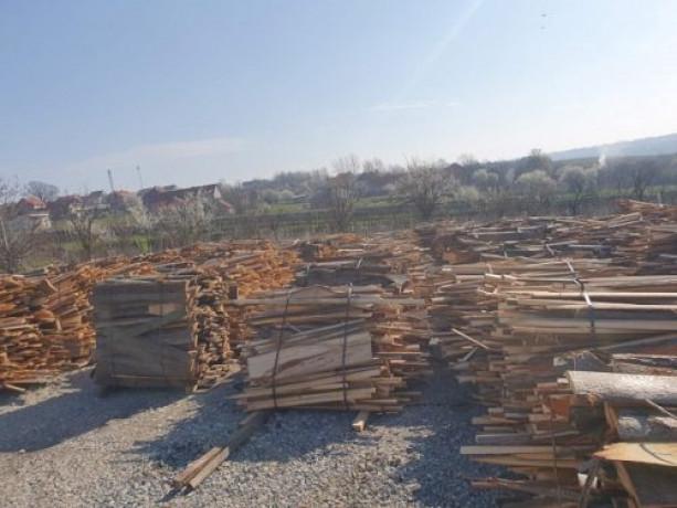 drva-okrajci-okorci-big-2