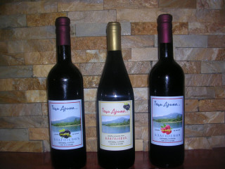 Domace vino od kupina