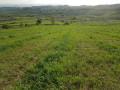 zemljiste-nigde-jeftinije-gornja-badanja-small-0