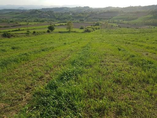 zemljiste-nigde-jeftinije-gornja-badanja-big-0